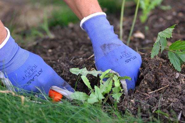 Atlas Nitrile Gardening Gloves - American Glove Company